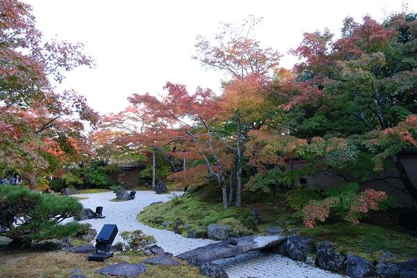 松島円通院の紅葉の写真