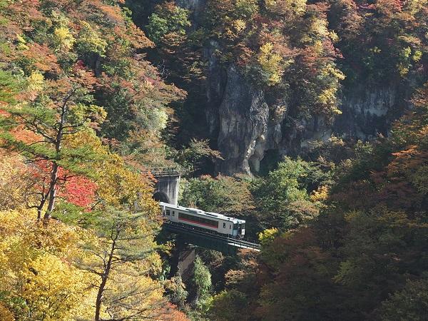 奈r府故郷の秋の電車の風景写真