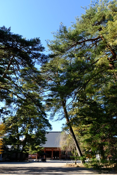 積載遺産奥州平泉毛越寺の風景写真