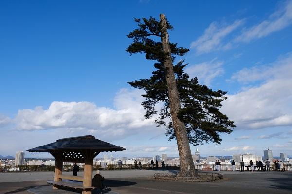 仙台城址公園から仙台市内を望んだ写真