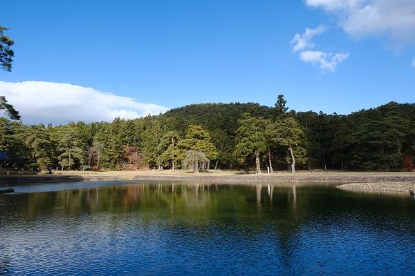 毛越寺大泉ヶ池の紅葉の写真