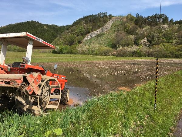 トラクターでの代掻きの風景写真