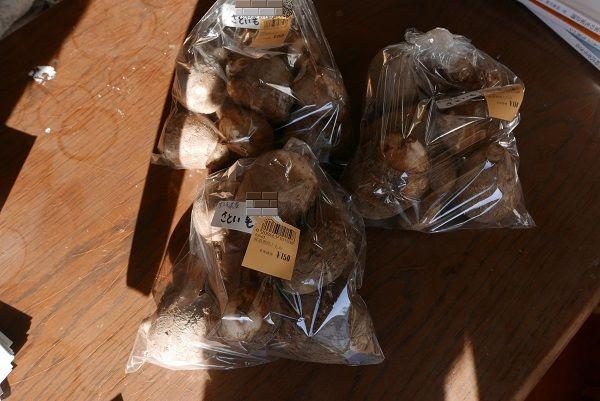 芋の子の秋野菜の産直への出荷の荷姿の写真