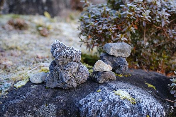 霜が降りた庭いしの写真
