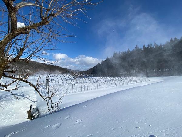 畑の場所だったヶ所の雪の風景写真